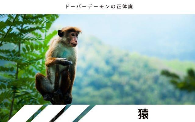 逃亡した猿説