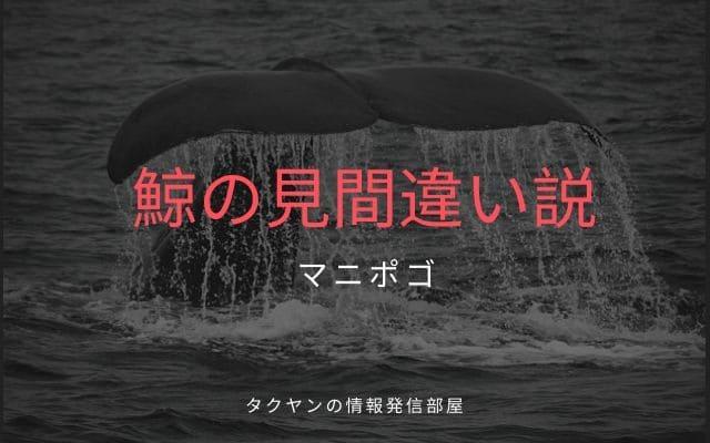 マニポゴの説1: クジラの見間違い