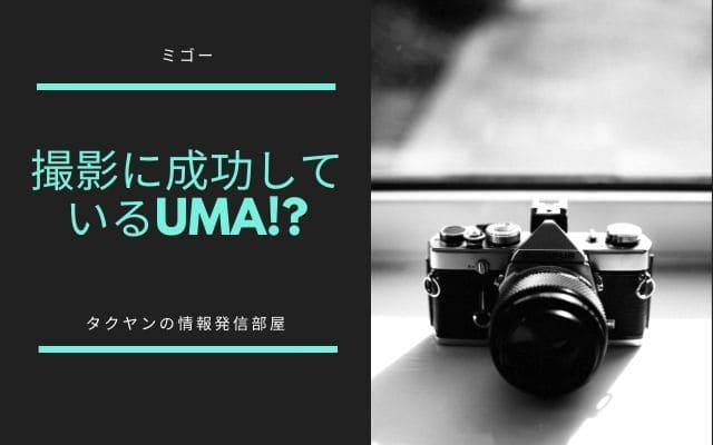 ミゴーは撮影に成功しているUMA!?
