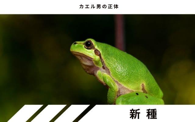 カエル男の正体: 新しい両生類