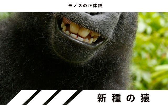 未知なる・突然変異の類人猿説