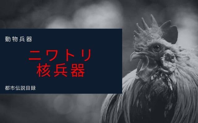 動物兵器5: ニワトリ
